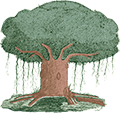 IIT Gurukulam Footer Logo
